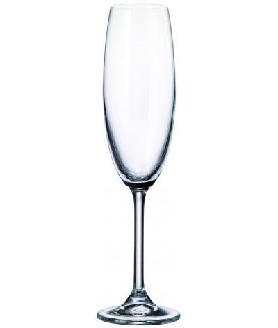 Set 6 copas Espumante